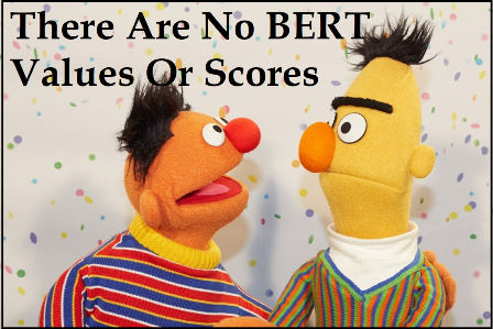 Google Said BERT Values Are Not There